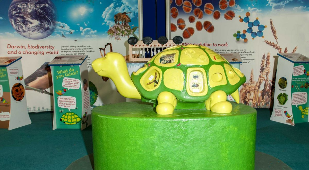 Darwin Today - Science Exhibition - Interactive Tortoise Exhibit