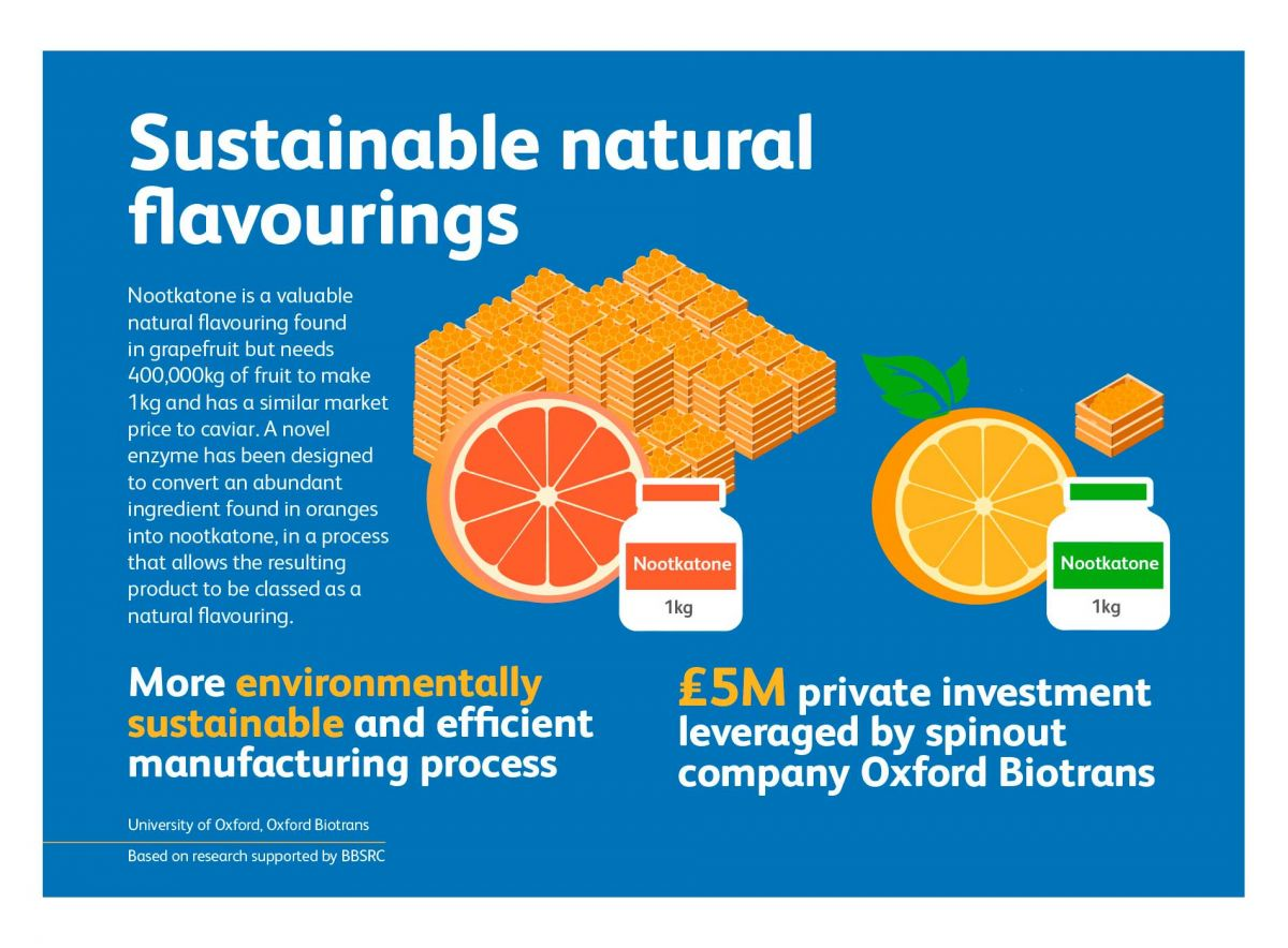 BBSRC & UKRI - Industrial Bioscience - Creating Natural Nootkatone Flavouring From Oranges